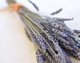 SALE Bunch of Lavender -  Fine Art Photograph