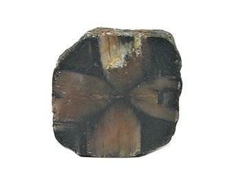 Andalusite Chiastolite Crusader Cross Semiprecious Gem Polished Crystal Slice Talisman Natural Gemstone Geo Charm