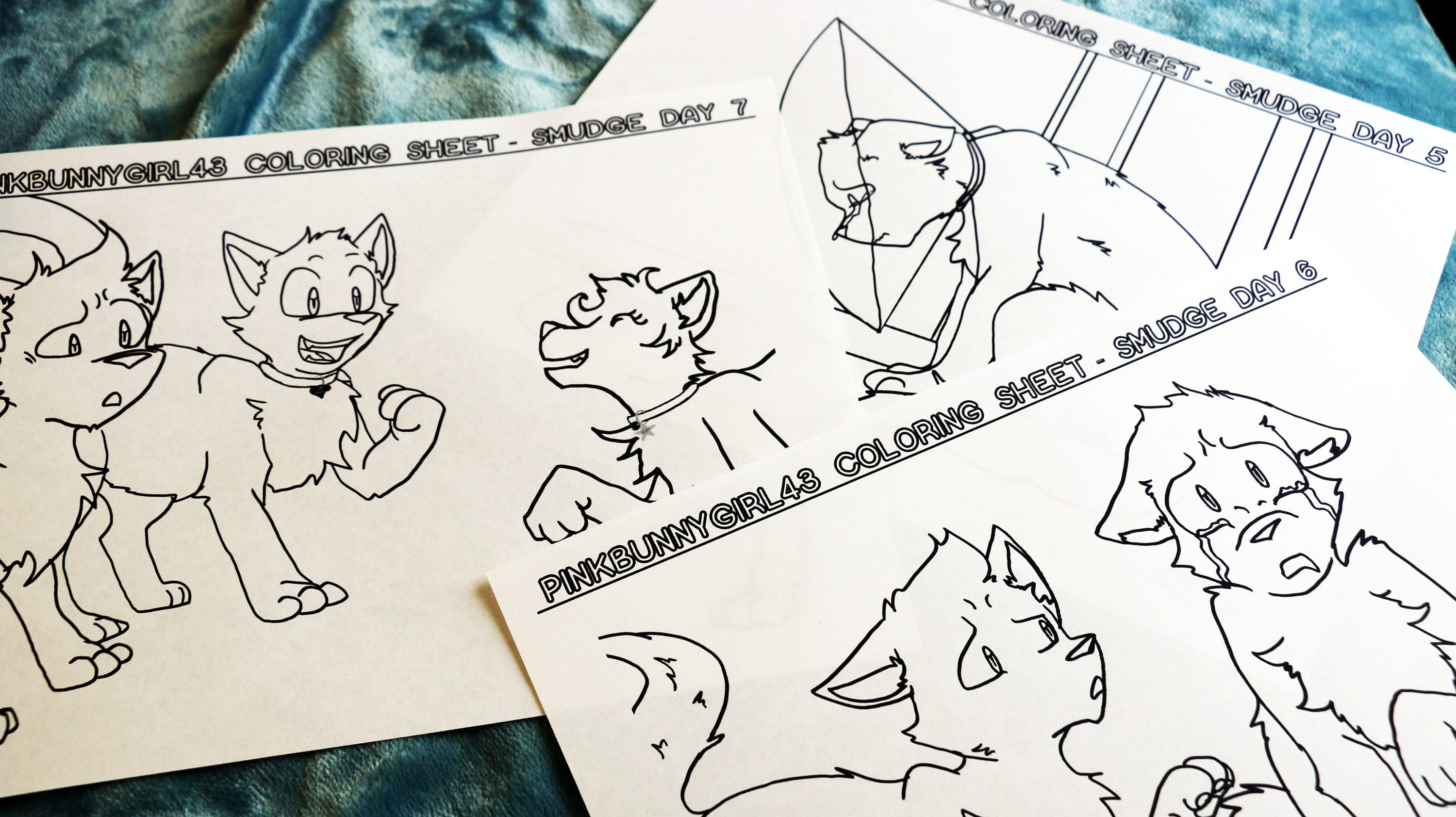 Days 5-7 Warrior Cats Smudge Downloadable Coloring Sheets