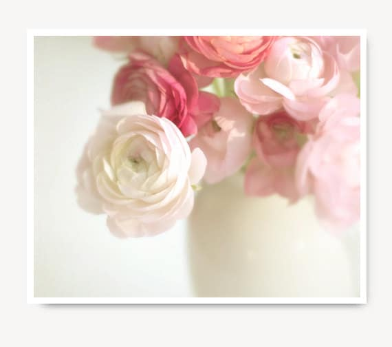 Pink Ranunculus Photo Flower Print Shabby Chic Cottage