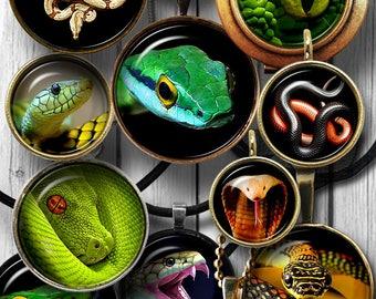 "Snakes Digital Collage Sheets Printable Downloads for Bottle Caps Pendants Cabochons Scrapbooking 1.5"", 1.25"", 1"", 30mm, 25mm Circles JC-084"