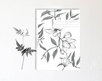 Botanical-notebook monocot - handmade - note notebooks - Clematis montana vegetable design