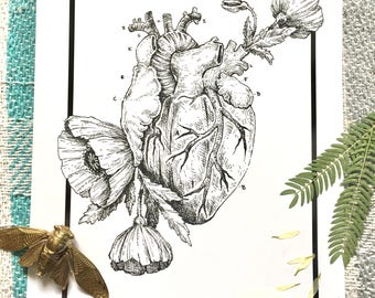 Anatomical Heart and Poppies