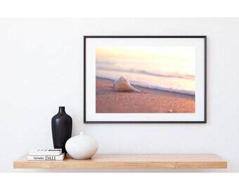 Beach Wall Art - Shell and Beach Photograph, Beach Print, Beach Art Print, Digital Download, Beach Decor, Printable Art, Shell Photograph