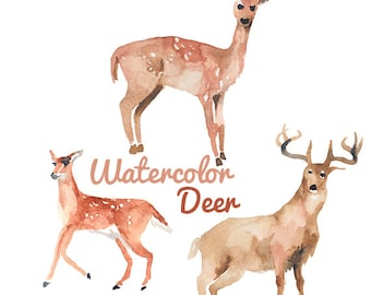 Watercolor Deer Clip Art Image Pack Clipart Digital Download Deers Clipart Scrapbooking Hunting Digital
