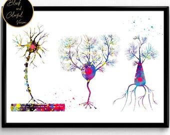 Multipolaire Neuron, neurologie medische Art, Science Poster, Brain afstuderen, neurowetenschappen neuroloog kliniek, aquarel Print(1201)