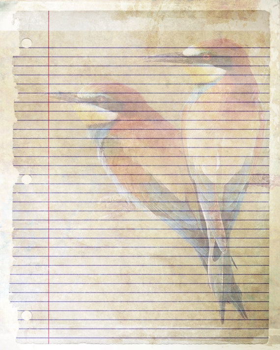 printable journal page bird writing lined stationery 8 x 10