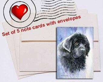 Newfoundland Head Study V Note Card Set