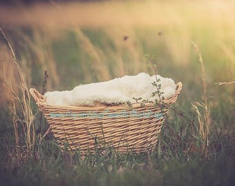 Dreamy light and natural light newborn basket backdrop, digital backdrop field with basket, dreamy lighting