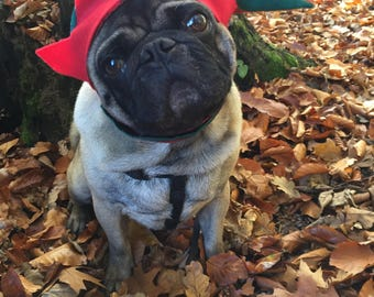 The Christmas Elf Hat: Green and Red Pointed Christmas Hat with Felt Border, Dog Elf Hat, Dog Pixie Hat, Dog Christmas Hat, Xmas Pug Hat