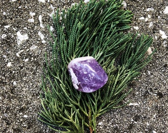 Amethyst (#4) – EXACT crystal shown (1) Reiki Charged