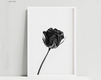 Rose PRINTABLE, Rose poster, Botanical print, Black flower, Black and white minimalist wall art, Contemporary wall decor, Nordic Art