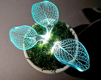 Sprout Night Light - Modern Lamp - LED Light - Desk Lamp - Gift Ideas - Home Decor -