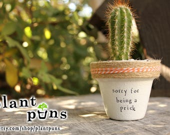 """2.25"""" Sorry For Being A Prick » Cactus gift Cactus cute plant puns  plantpuns gift succulent planter succulent pot gift Cactus present cute"""