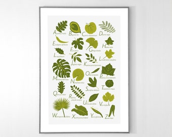 Leaves Alphabet Poster from A to Z, BIG POSTER 13x19 inches