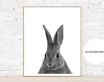 Rabbit Print, Animal Print, Nursery Print, Digital Download, Black and White, Cute Animal, Rabbit Wall Print, Home Decor