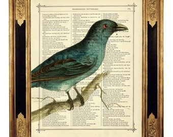 Blue Bird Image III Country Style Art Spring Romantic - Vintage Victorian Book Page Art Print Steampunk