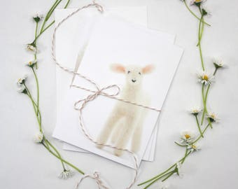 Set of 3 Lamb Greeting Cards, blank card set, Spring, Birthday or any occasion