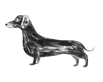 Sausage Dog - signed giclee print