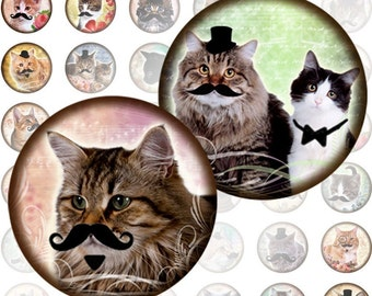 Vintage Cats and kittens with moustache and monocles 1 inch circles (201)