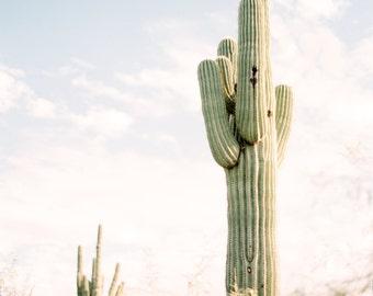 Saguaro cactus print, desert photo print, Arizona print, Southwestern decor