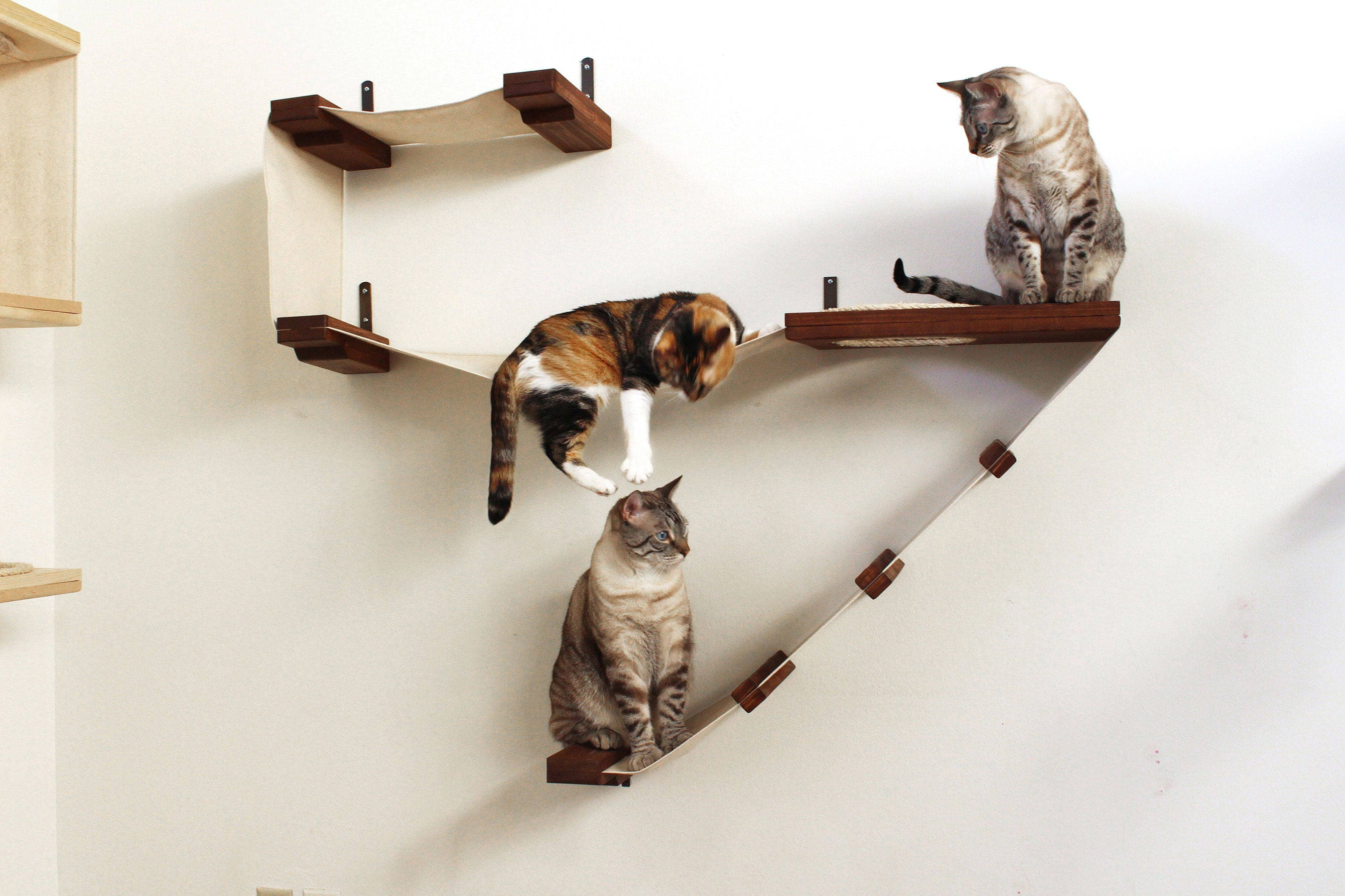 zoom deluxe playplace cat hammock shelves free us shipping  rh   etsy