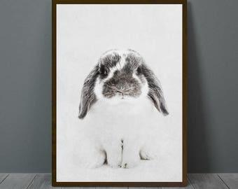 Bunny Print, Bunny Wall Decor, Bunny Poster, Bunny Nursery, Animal Print, Wall Decor, Rabbit, Bunny, Bunny Cute Nursery Wall Art