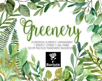 Greenery, Watercolor leaves, Eucalyptus, Magnolia, Salal Leaves, Clipart PNG, DIY projects, Wedding invitations, Botanicals,