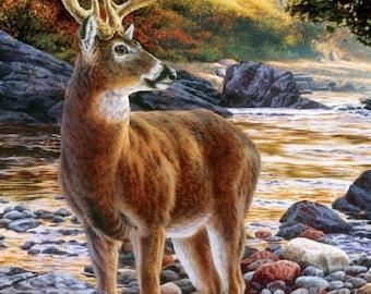 Shallow Deer Crossing Cross Stitch Pattern***LOOK***