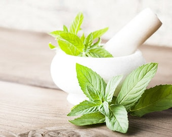 Peppermint Essential Oil ~ Organic Aromatherapy Essential Oil ~ Pure, Uncut Organic Peppermint Oil