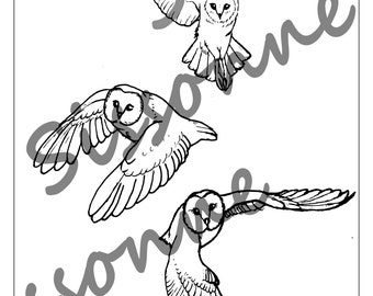 Barn Owls In Flight Coloring Page