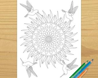 Hummingbird Coloring Book Page, Bird Coloring Page, Adult Coloring Book Page, Flower Coloring Page, Garden Coloring Page, Digital Dowload