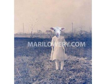 Creepy Wall Art, Anthropomorphic, 8.5 x 11 inch Print, Oddities, Lamb Art, Collage Art, Animal in Clothes, frighten
