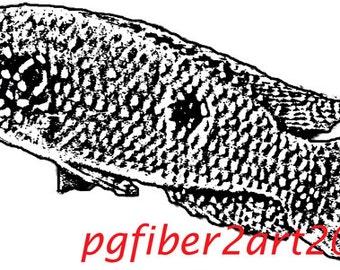 Thermofax Screen Fish 1
