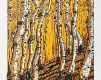 Silver Birches, Yellow Light.