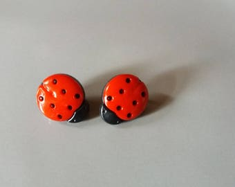 Pair of Ladybug button