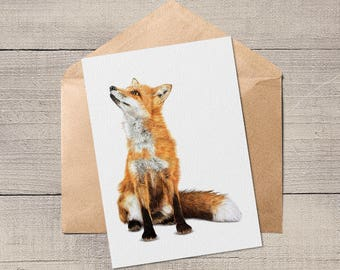 Fox A6 Blank Animal Artist Card