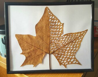 Hand-cut autumn leaf