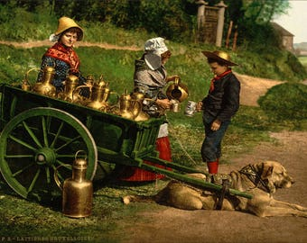 Poster, Many Sizes Available; Belgian Milk Peddlers Photochrom Of Belgian Milk Peddlers With A Dogcart, C. 1890–1900