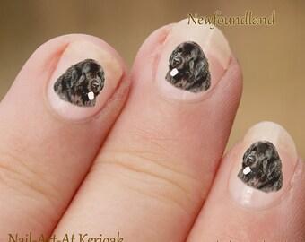 Newfoundland Nail Art,  Dog Nail Art Stickers,  Fingernail Stickers, Newfie large black dog, decals, photographic nail art