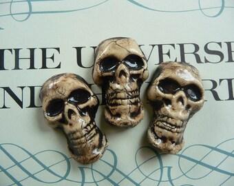 25 porcelain skull tiles