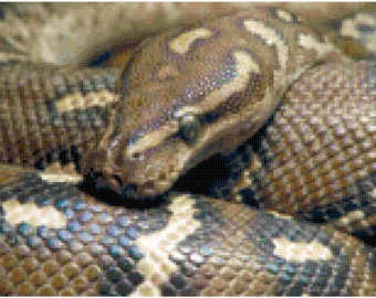 Boa Constrictor Snake Counted Cross Stitch Pattern Chart PDF Download by Stitching Addiction
