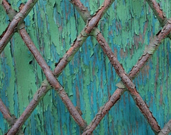 Rusty Fence, Blue Green Background