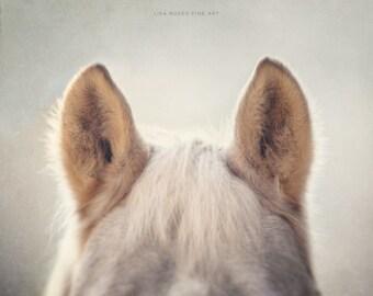 Horse Art | Horse Large Print or Canvas | Whimsical Horse Print | Animal Print | Nursery Decor | Fuzzy Horse Ears Cream | Beige | Tan.