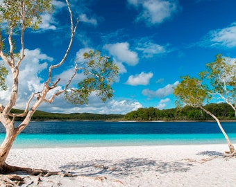 Lake Mckenzie, Fraser Island, Australia, Australian Wall Art, Fraser Island Photography, home decor, Large wall art