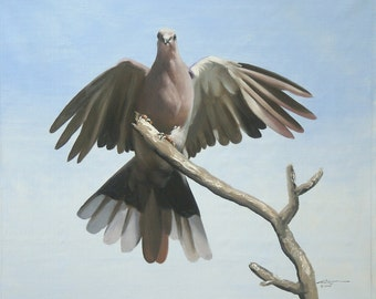 Dove 11 x 17 print (image 10.5 x 12.75)  by artist RUSTY RUST / D-103-P