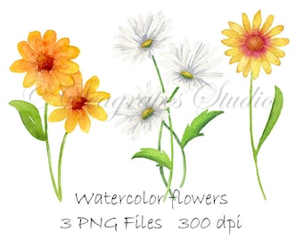 Watercolor Flowers Clipart, PNG Files Instant Digital Download, Hand Painted Watercolor Daisies Printable Clip Art
