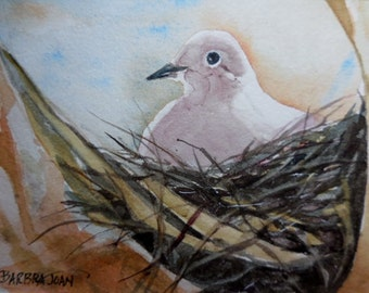 Dove Original watercolor, original w/c, dove painting