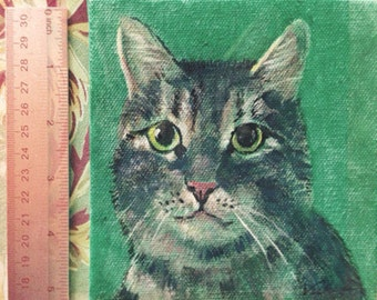 Gray tiger cat