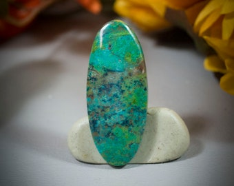 Parrot Wing Chrysocolla Cabochon 40-4916